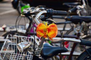 bike-1345383_1920