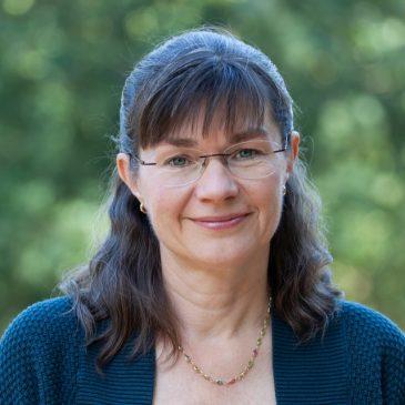 Lida Veenstra, fractievertegenwoordiger